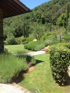 Particolare-giardino-1