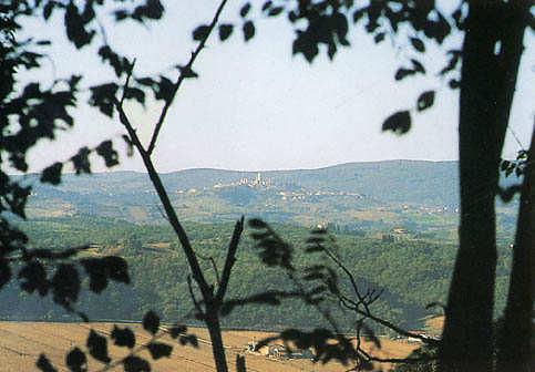 agriturismo-fulignano-panorama