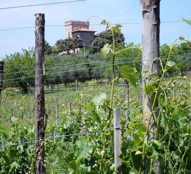 castello-di-volognano-05